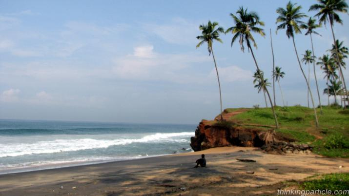 Palm fringed Black beach Varkala