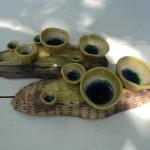 Ceramic-Pottery-Shop-Varakala-Kerala6